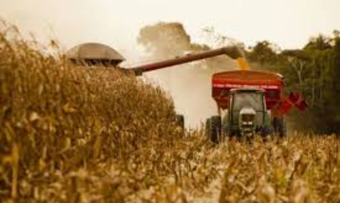 Proposta de orçamento prevê R$ 1 bi para seguro rural